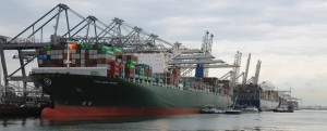 CANOLA_SHIPMENT