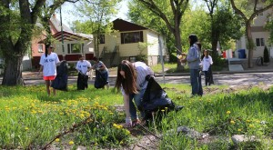 SPRING_CLEAN_UP