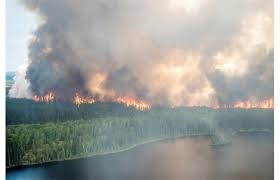 FOREST_FIRES