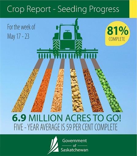 Crop Report infog May 17-23