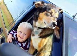 KIDS_DOGS