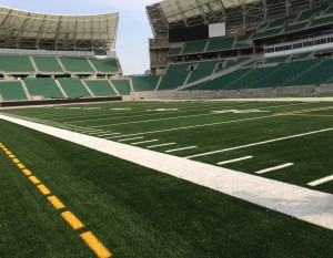 MOSAIC_STADIUM2_AUG31