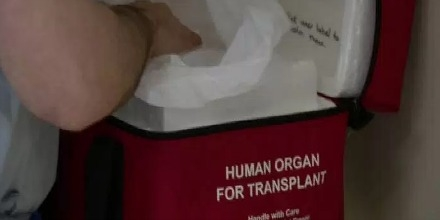 HUMAN_ORGANcc