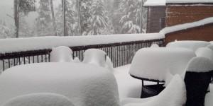 SNOWcc