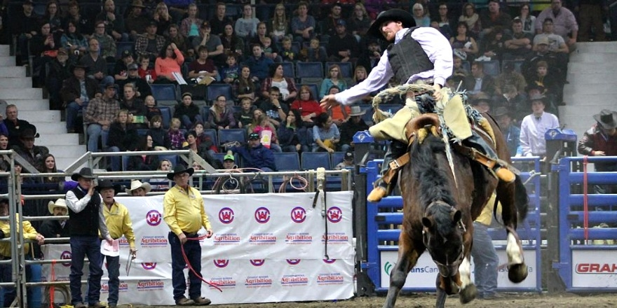 AGRIBITION_RODEOcc